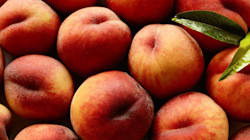 READ: Fruit Recall Over Listeria