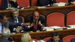 Scilipoti show, Gasparri: