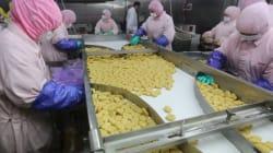 Des pépites de pouletavariéesen