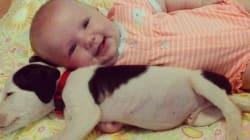 Eisleigh e Clyde, amore a prima vista (FOTO,