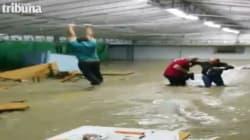 Si aggrappa al tetto per sfuggire all'acqua (FOTO,