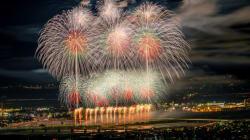 この花火がすごい2014 夜空にきらめくフェニックス