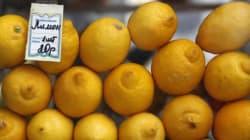 Poutine interdit les importations agroalimentaires d'Europe, les producteurs français doivent-ils
