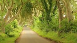 L'Irlande du Nord: sur les pas de Game of Thrones