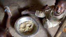 800 millions de personnes souffrent de la faim dans le monde, moins qu'il y a 10