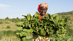 Africa's Booming Population Needs Agricultural