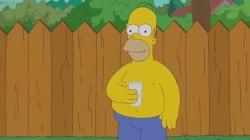 Homer Simpson a fait le Ice Bucket Challenge à sa