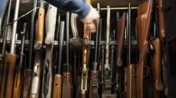 Registre des armes à feu: Québec serait prêt en 45