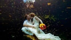 Ils se marient 66 fois dans 66