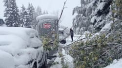 Snow Knocks Out Power For Thousands In