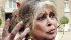 Brigitte Bardot écrit à Ban Ki-moon pour interdire