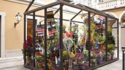 Marni Flower Market: