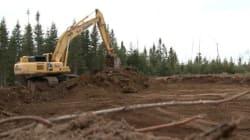 Certification éthique : les Atikamekw ciblent des compagnies forestières