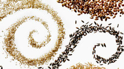 10 Seeds We Should All Be Eating