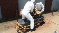 Ebola, la