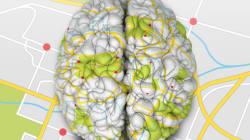 Le Prix Nobel de médecine 2014 récompense la découverte du GPS du