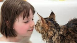Autistic Girl And Her Therapy Cat Share Heartwarming