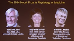 Brain GPS Takes Nobel Prize In Medicine For