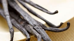 The Role Of Vanilla In Baking (And How To Replace