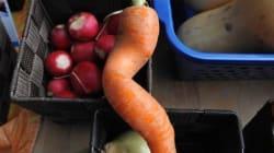 Second Life: un marché pour les légumes