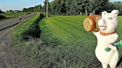 Sur le chemin du Compostelle québécois: Sainte-Brigitte-des-Saults à Nicolet
