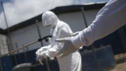 Si muta, ¿podría el virus del ébola contagiarse por vía