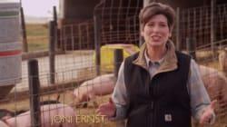 Joni Ernst, castreuse de porcs et révélation des