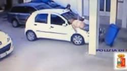 Un volo di sei metri per rapire la figlia dalla struttura protetta