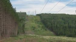 Expropriation par Hydro-Québec: des Gaspésiens gagnent leur