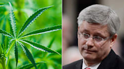 The Internet REALLY Hates Harper Government's Marijuana