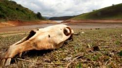 Falta de dados + falta de chuvas - obras necessárias = SP sem água em