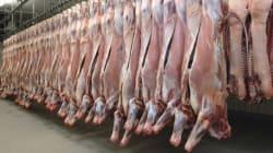 Viande périmée revendue, asticots dans les steaks: un ancien cadre d'abattoir