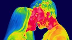 La vie quotidienne vue en infrarouge