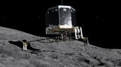 Non, Rosetta n'a pas détecté de vie sur la comète