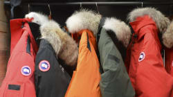 Canada Goose Jackets Perfect For Men And