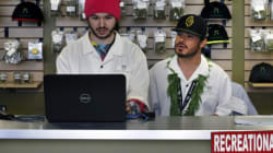 Legal Marijuana Industry Is About To Get Its First