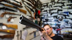 Les propos de Stephen Harper sur les armes à feu