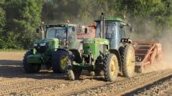 Attenti all'Imu agricola, la tassa che penalizza la