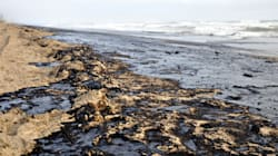 Concern Grows Around Tories' Oil Spill Cleanup