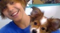Pluie d'hommage après la mort... du chien de Justin