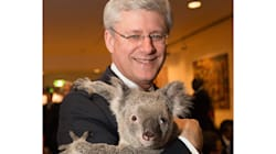 Here Are Some People Harper Will Meet Not Named Kathleen