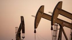 Oil Soars 12% In One