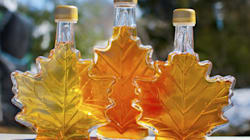 Sweet, Sticky Crackdown: Maple Syrup Gets Tough New