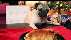 Doug The Pug Just Created Every Pet's Favourite Christmas