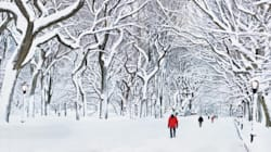 Take Time to Enjoy the Winter Wonderland This