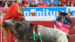 Morrissey Calls Bullfighter A Serial Killer, 'Delighted' She Was