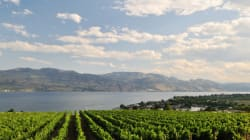 Another Top Nod For Okanagan Valley