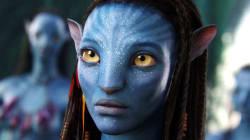 Les fans d'Avatar vont devoir s'armer de