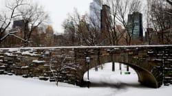 Finalement il est tombé 16 cm de neige à Central