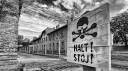 Auschwitz: Memories Of Horror In